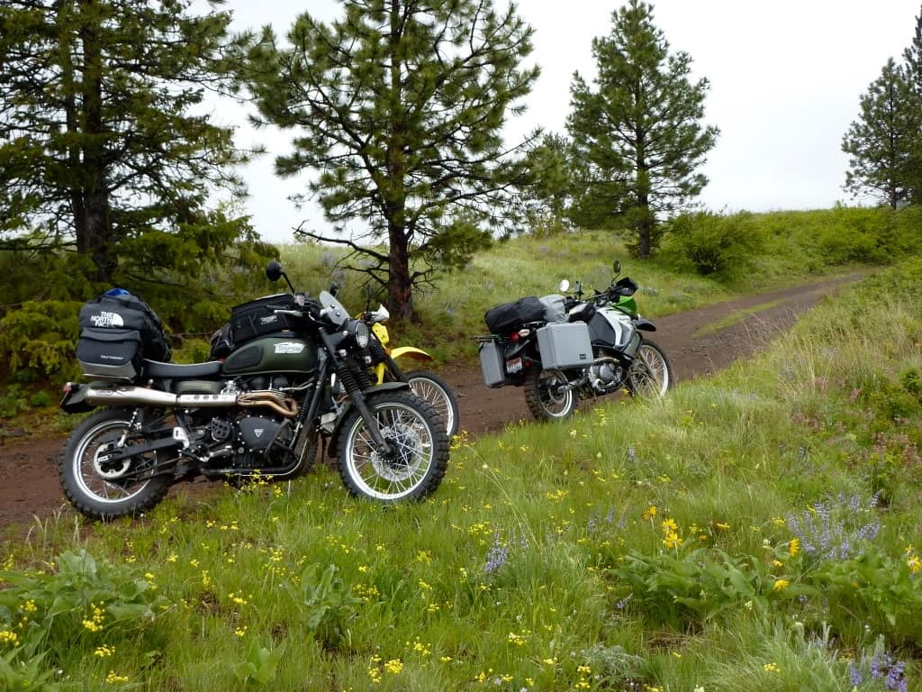 A Triumph Scrambler with an Arrow exhaust, in adventure mode, powering up a dirt road