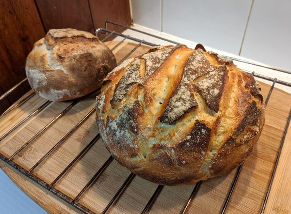The Grounding Effect of Baking Sourdough Bread